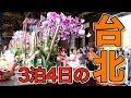 【ひとり旅】夏休みを利用して台北市内を3泊4日でいろいろ行って来た|台湾旅行