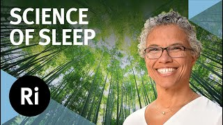 Essential Functions of Sleep: Learning, Memory and Changing Your Mind - with Gina Poe
