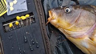 My favorite carp rig! How to tie a hair rig and method lead. Best Carp fishing rig