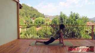 Сурья намаскар Шивананда йога