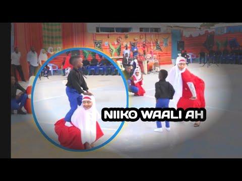 Download NIIKO SHIDAN DEGMADA WAABERI