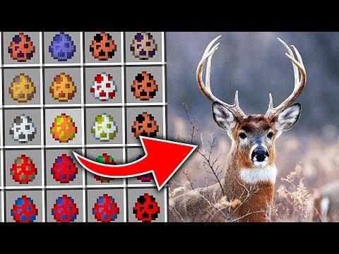 Вопрос: Почему можно сказать , что олени у Санта Клауса – самочки, а не самцы?
