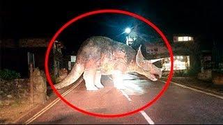דינוזאור אמיתי נתפס משוטט ביער על ידי מצלמה! (הוכחה שדינוזאורים קיימים)