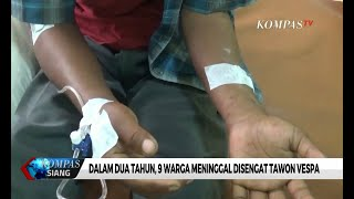 Disengat Tawon Vespa, Warga Dirawat Di Rumah Sakit