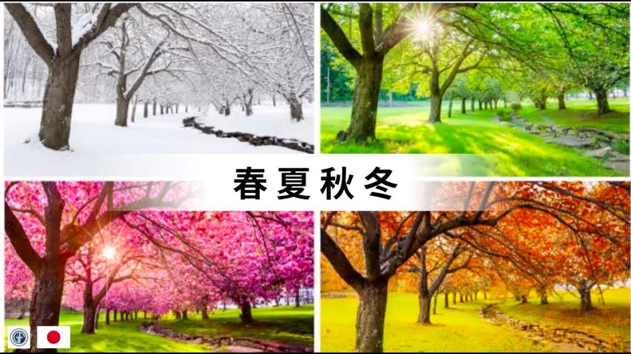 春 夏 秋 冬 日本の四季 - YouTube