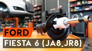 Ar išdrįsite pataisyti savo automobilį? - FORD FIESTA priežiūros ir remonto instrukcijos