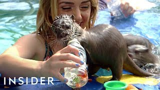 Swimming With Otters + Horseback Riding In The Ocean | Travel Dares Ep 2