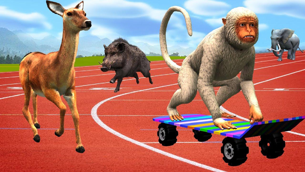 चतुर बंदर गर्व हिरण चल दौड़ Clever Monkey Proud Deer Running Race हिंदी कहनिया Hindi Kahaniya