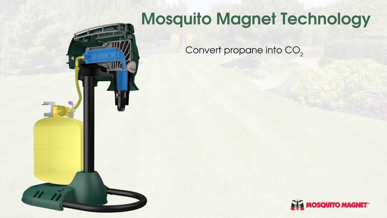 mosquitomagnet