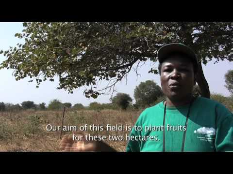 Living with climate change in Zambia