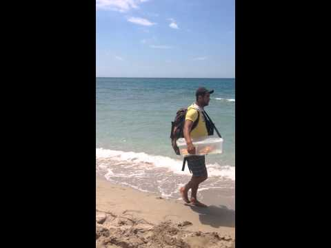 Продавец пахлавы на пляже
