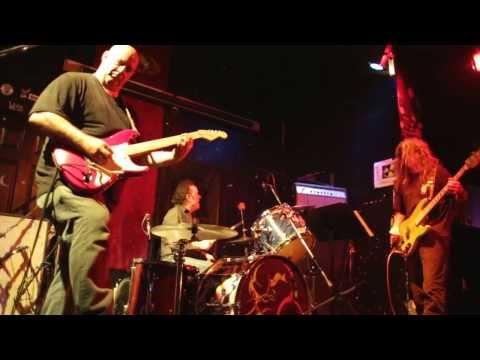 The Mermen - Sponge Cookie (Live 2013)