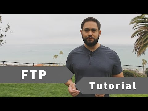 Learn How FTP Works