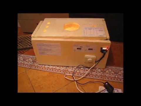 самодельный пенопластовый инкубатор. homemade styrofoam incubator