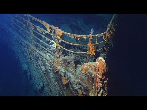 25 AMAZING Underwater Discoveries That Left Us Speechless