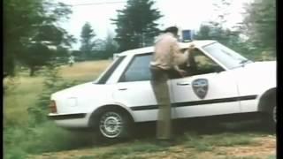 Best of Schuster Rookie Traffic Cop