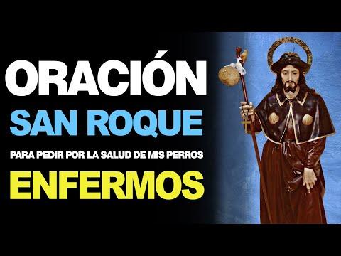 🙏 Oración a San Roque para Pedir por LA SALUD DE MIS PERROS ENFERMOS 🤒