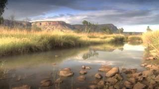 Wild Australia Thumbnail