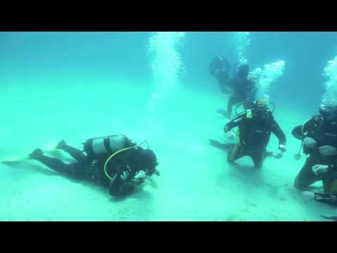 NGUE Northern Greece Underwater Explorers @ Akti Kalogrias Sithonia Halkidiki Greece