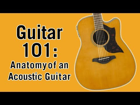 Guitar 101: Anatomy of an Acoustic Guitar