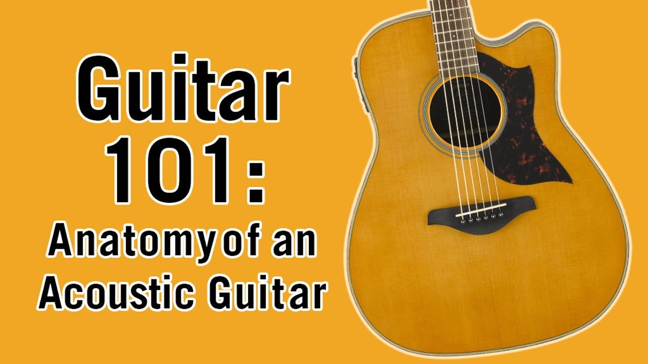 Guitar 101 Anatomy Of An Acoustic Guitar Youtube