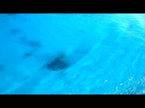 離島を出港する船から見た海の色/31秒