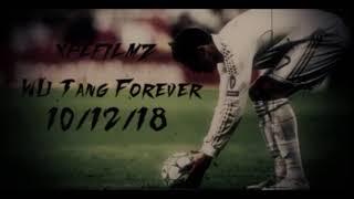 Скачать Wu Tang Forever 10 12 18