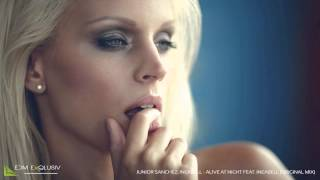 Junior Sanchez, Ineabell - Alive At Night feat. Ineabell (Original Mix) [HD/HQ]