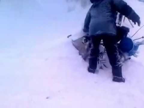 Снасть для ловли толстолобика зимой видео