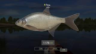 Русская рыбалка 4 - река Волхов - Крупный лещ на собственный прикорм