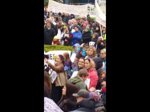 Demonstrasjon i Oslo mot barnevernet 2