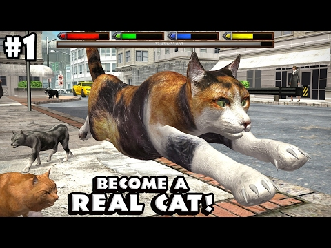 Ultimate Cat Simulator By Gluten Free Games - Android/iOS - Gameplay Episode 1