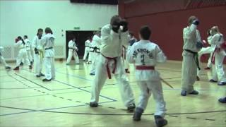 Sparring seminar by Tomaz Barada TAEKWON-DO ITF