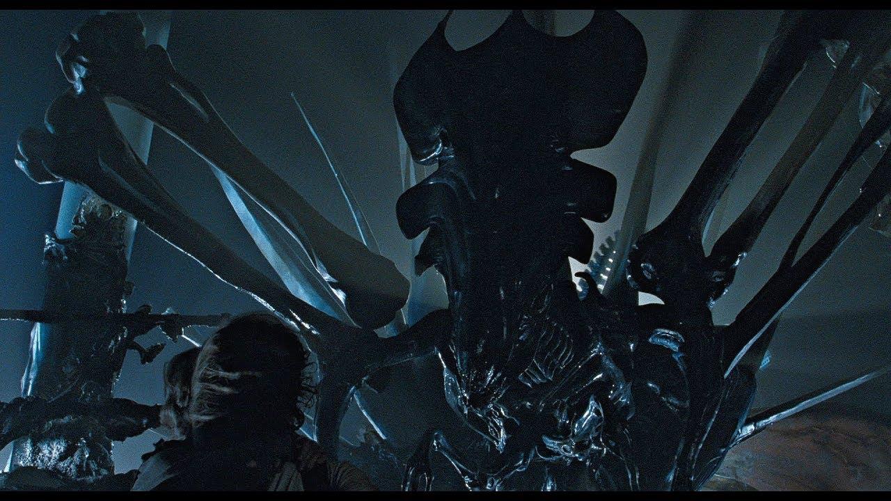 Horror Movie Fanfic   Who Would Win In A 3 Way Fight Predator, Alien
