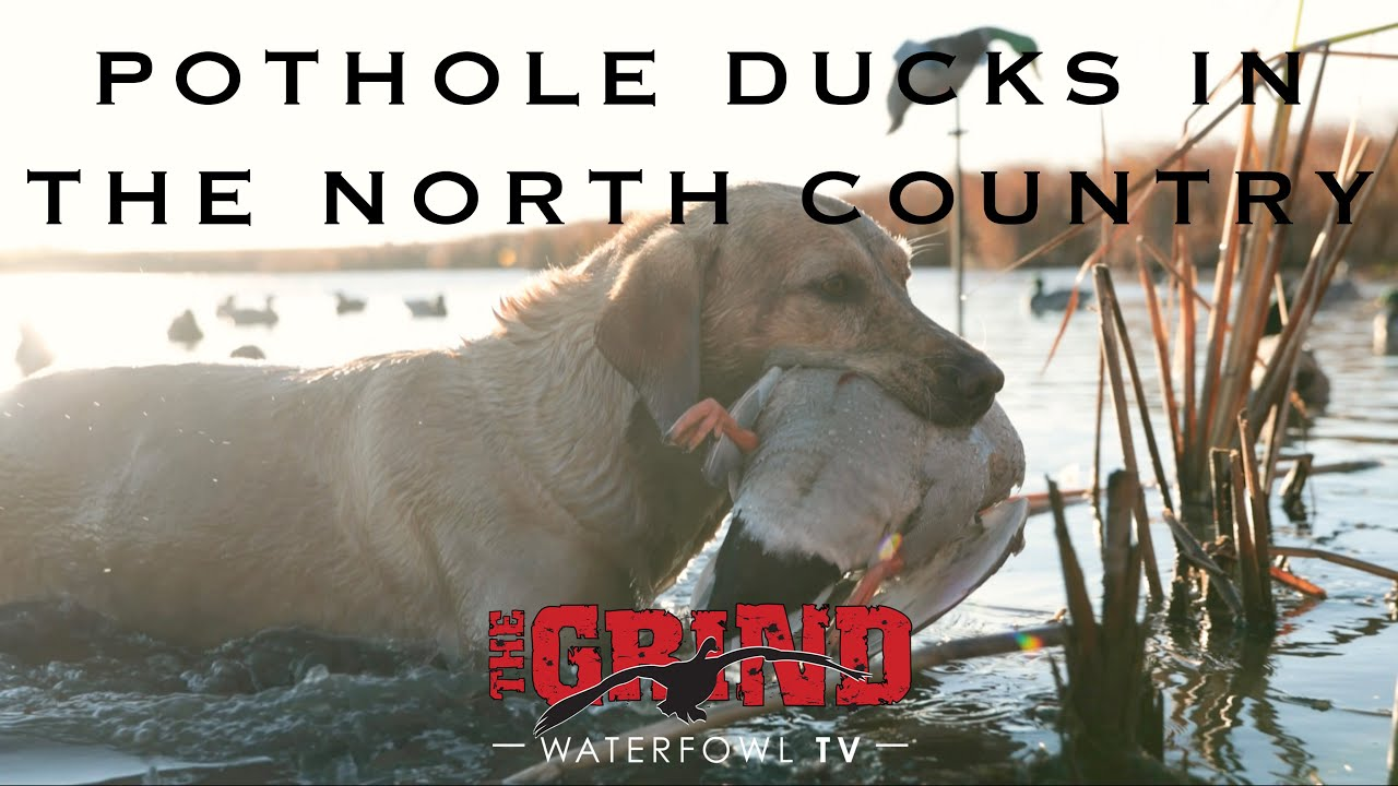 Pothole Ducks in the North Country   The Grind S10:E4