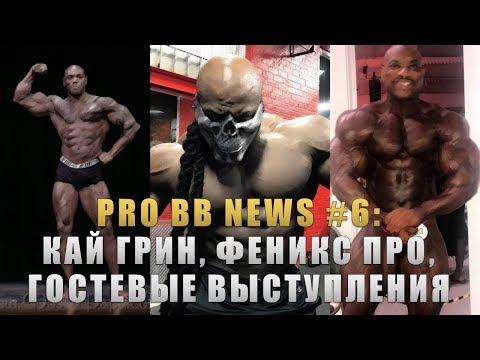 PRO BB NEWS #6: Кай Грин, Феникс Про и Гостевые выступления звезд!