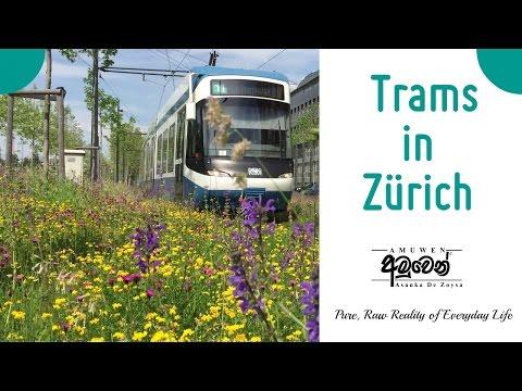 Traveling by Tram in Zurich
