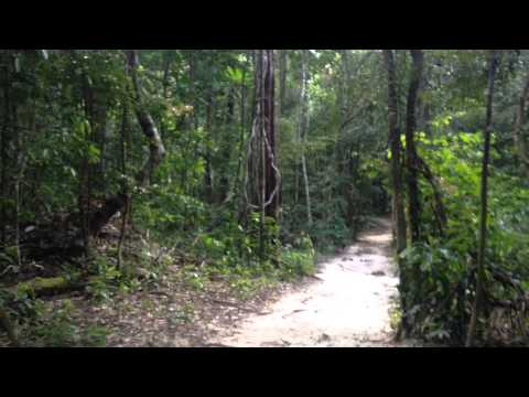 Health Hints From Around The Globe: Grounding On The Island Of Koh Rong Samloem