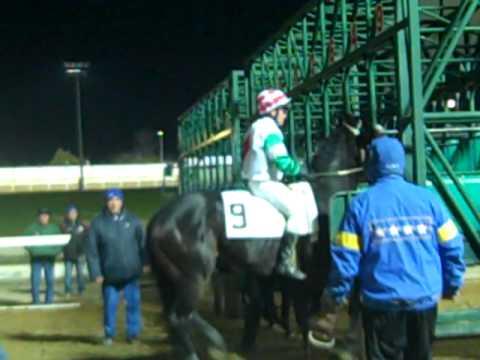 Albenga race track - Ippodromo, clip 8