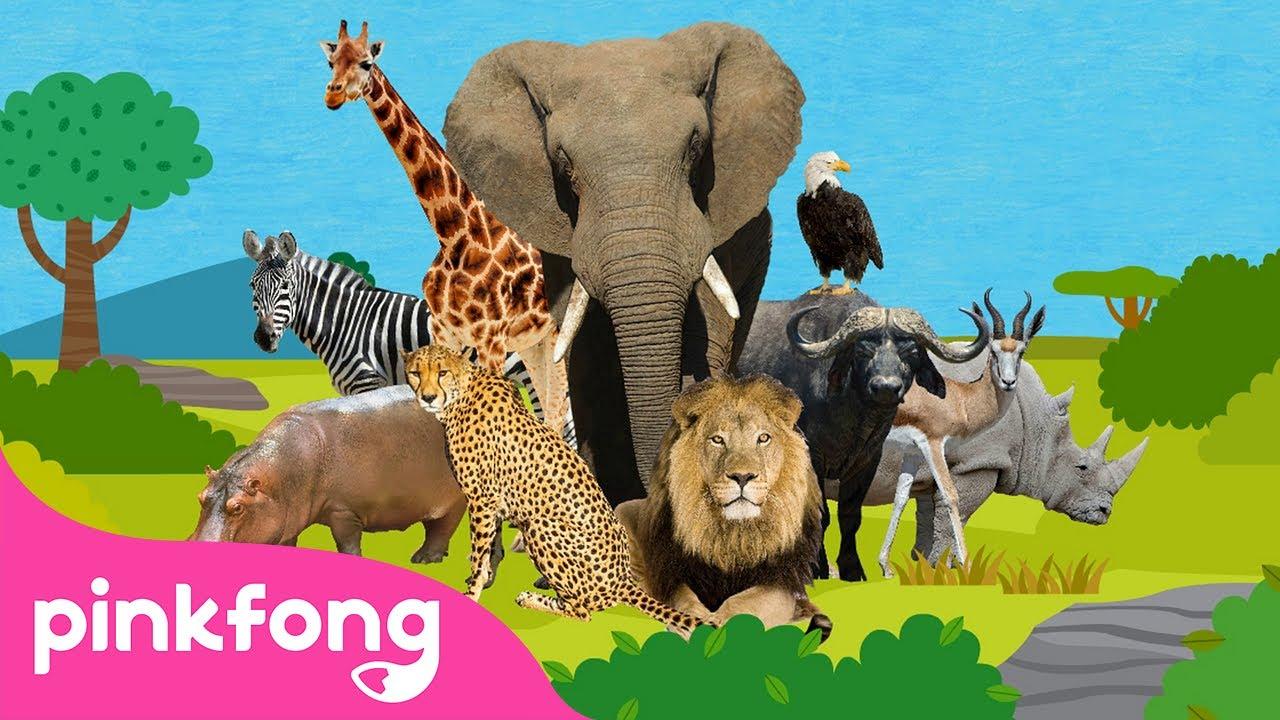 🦁Esta Es la Sabana 🐘🦓🦒  Canciones de Animales   Pinkfong Canciones Infantiles