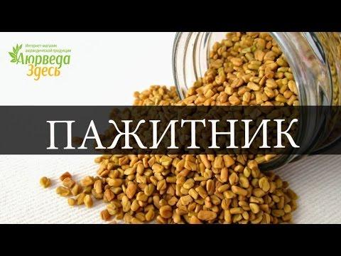 Трава пустырника: инструкция по применению, лечебные