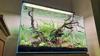 ADA 60P Classic Nature Aquariu…