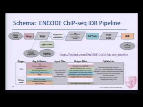 ENCODE Uniform Data Processing Pipelines:  ChIP-seq IDR Architecture - J. Seth Strattan