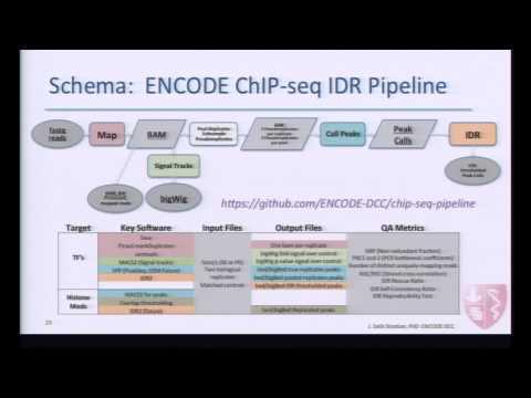 ENCODE Uniform Data Processing Pipelines:  ChIP-seq IDR Architecture - J. Seth Strattan