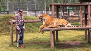 Carole's 20 year plan, exposed!joe pleas for the corruption in big cat world be a priority.the usda declared peta terrorist organization 2009 yet re...