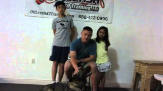 "People/dog Aggressive German Shepherd ""trooper"" Owner Testimonial!"