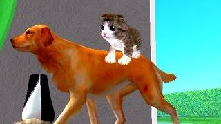 Новая ИГРА Симулятор Кошки для Android Котик БАРСИК в поисках ПРИКЛЮЧЕНИЙ Часть 3 Мультик про котят