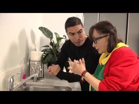 La Chilindrina y Piolin te enseñan a lavarte las manos para evitar el Corona Virus!