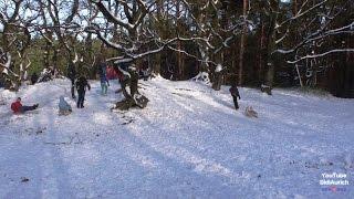 Aurich Wallinghausener Wald, ein Wintertag bei den Eierbergen mit Schnee Kraxelmaxel