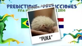 """""""PUKA"""" la Eriza predice el partido BRASIL vs CROACIA 2014 MUNDIAL DE FUTBOL (Erizon Cavani)"""